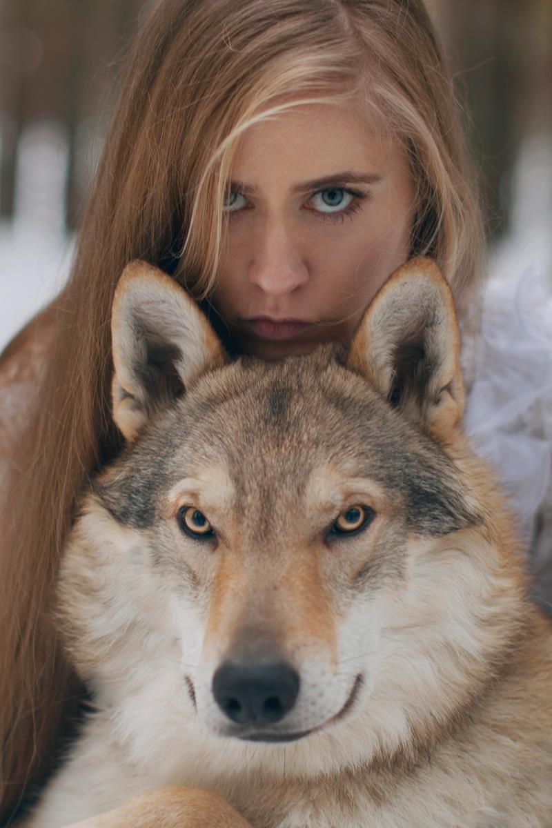 Девушка с волком фото на аву в вк