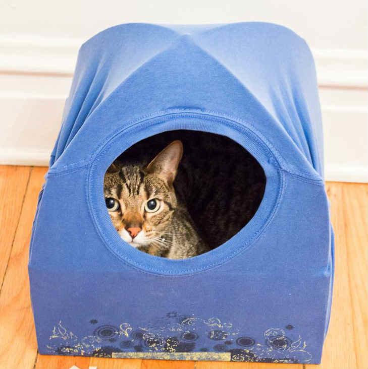 Как сделать простой домик для кота
