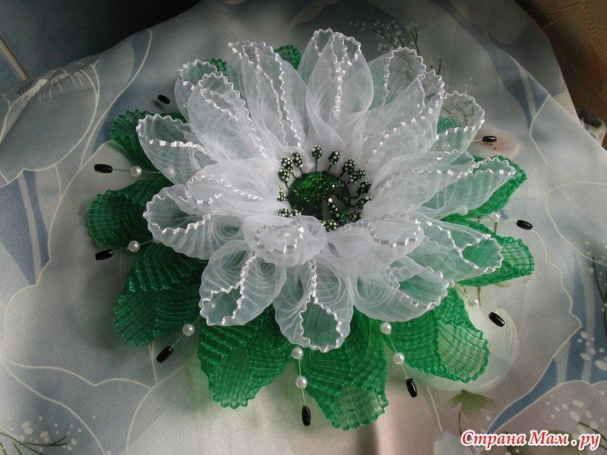 Фоторамки, Цветы. - Рамки для фото онлайн