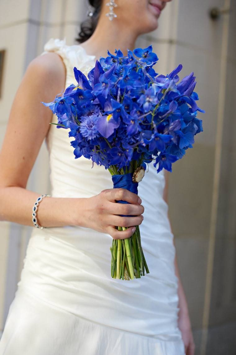 Blue dragon bouquet nuda anime images