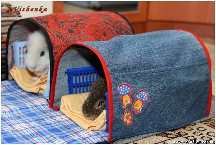 Сшить домик для свинки