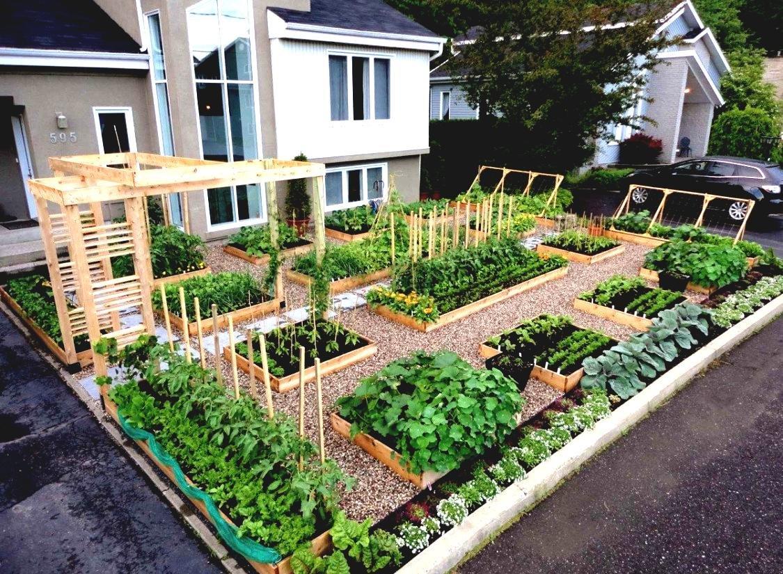 Дизайн проект огорода своими руками 31