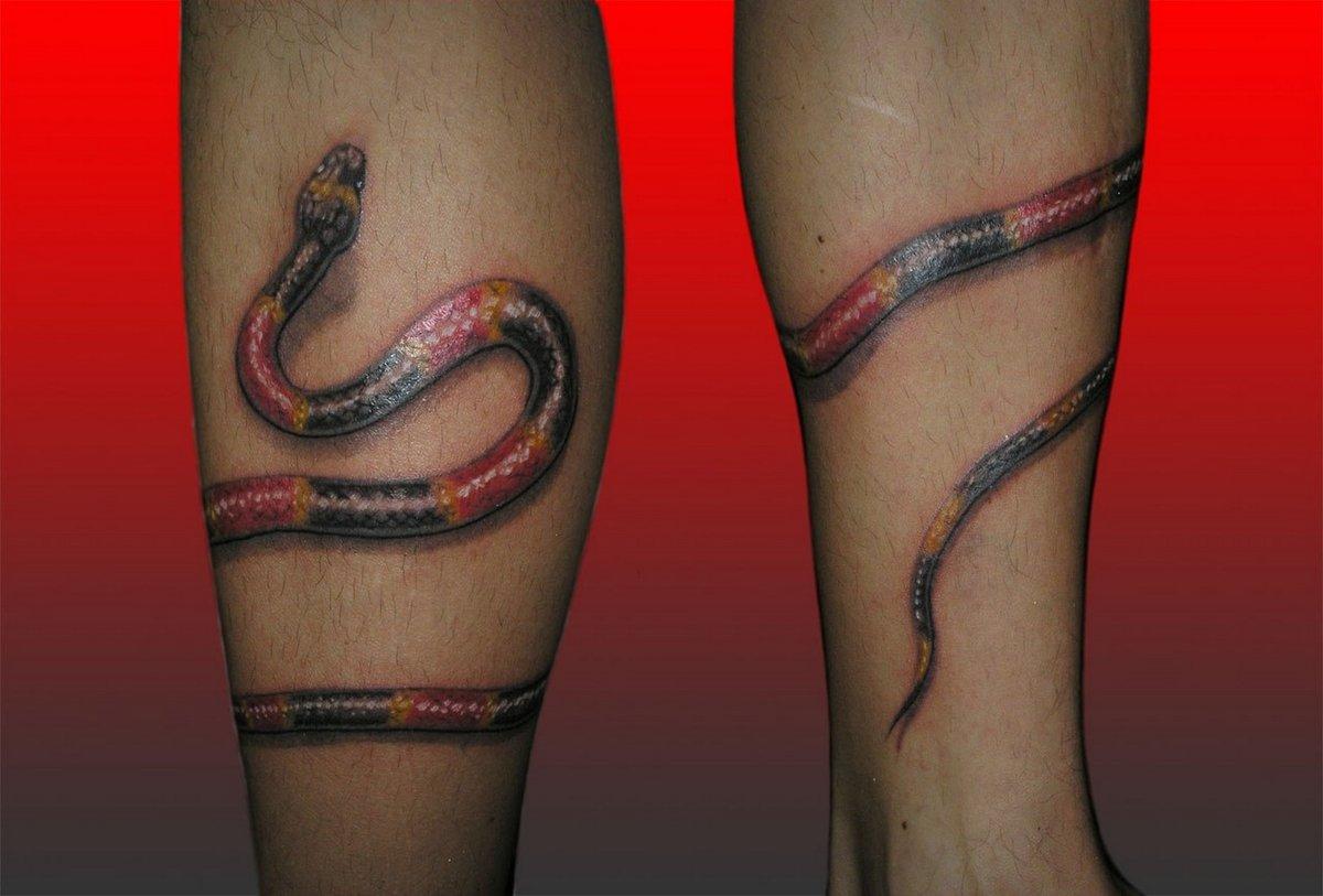 Татуировка змея в ноге фото