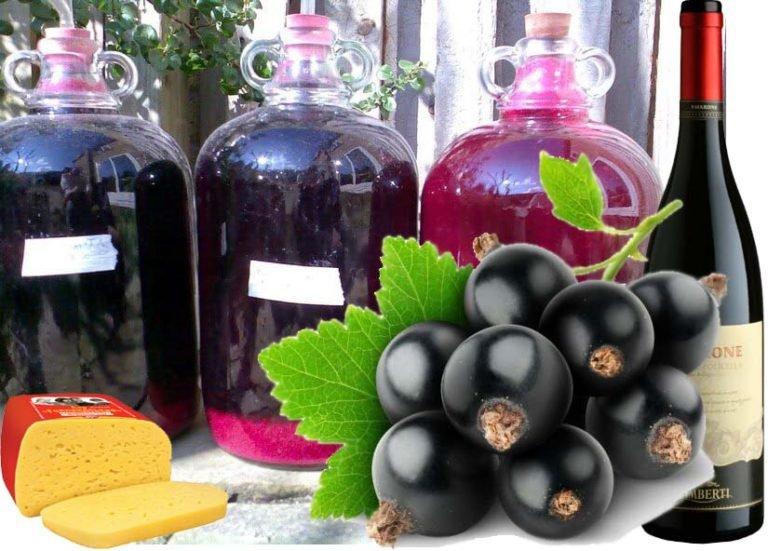 Как сделать вино из компота из смородины 788