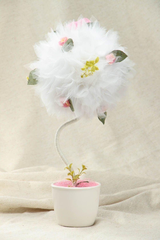 фуксия цветы фото семена