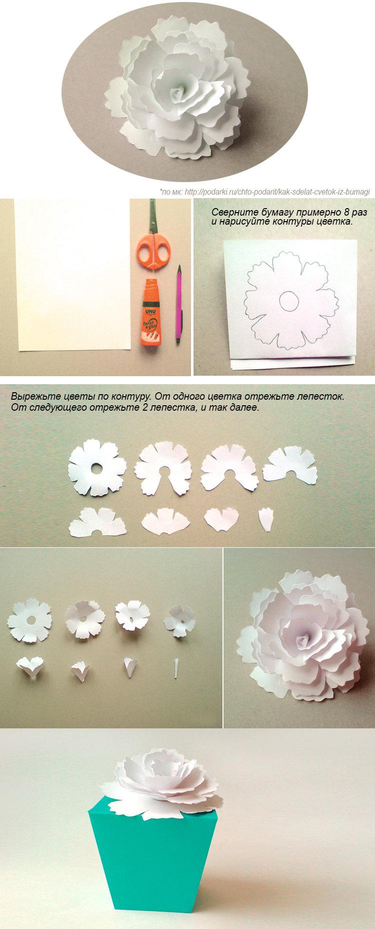 Цветы из бумаги схемы фото