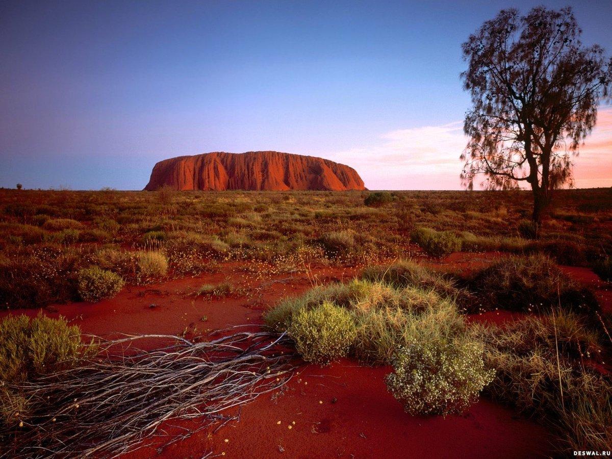 Uluru-Kata Tjuta National Park, Australia  № 891634 бесплатно