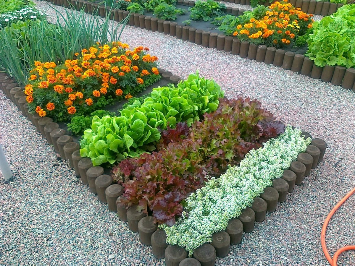 Своими руками для цветника огорода 82