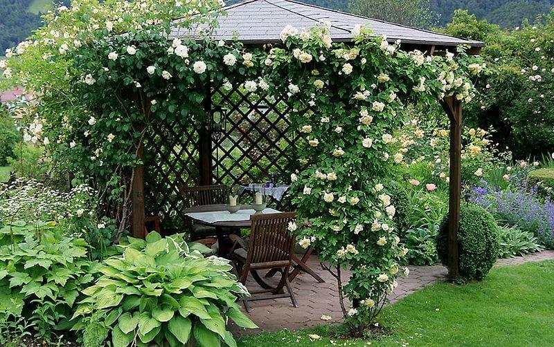 Уютные уголки в саду своими руками фото 28