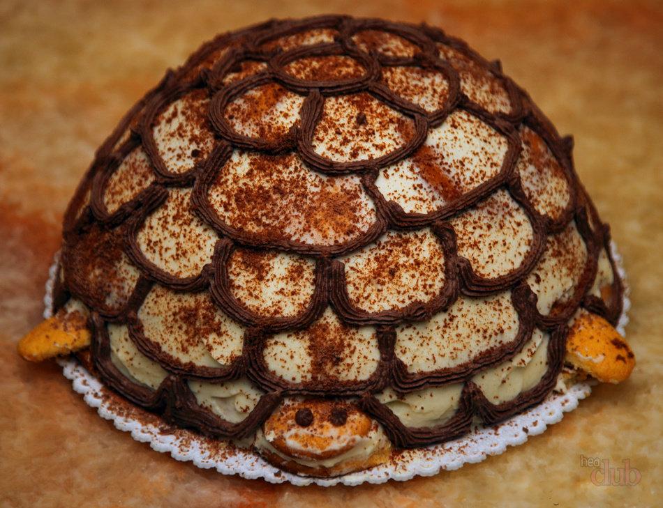 Рецепты тортов черепаха в домашних условиях с фото пошагово 145