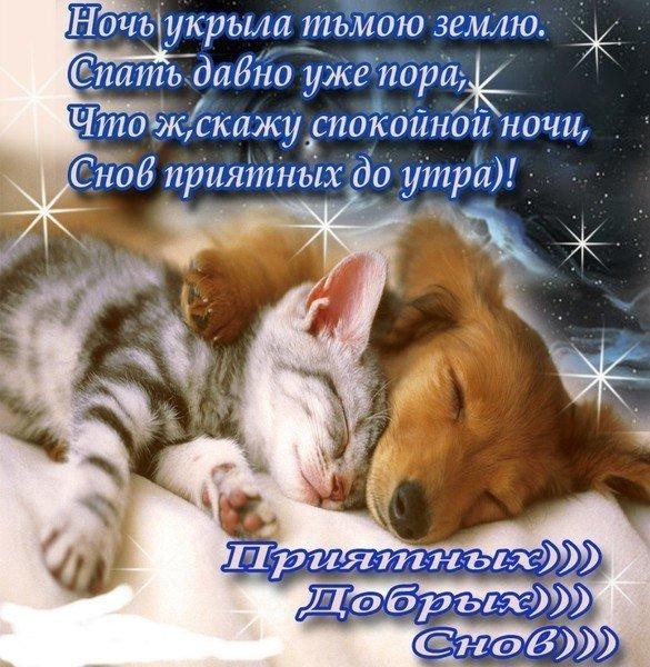 Открытка спокойной ночи мои любимые