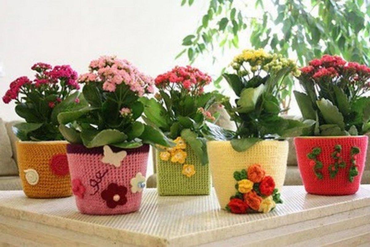 Комнатные цветы из ткани