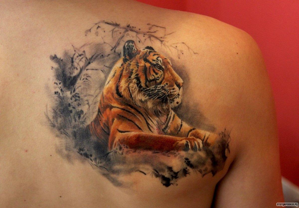 Тату для девушек тигра на лопатке фото