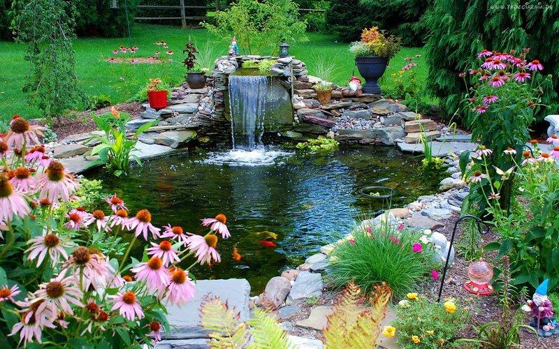 Ландшафтный дизайн пруд с водопадом