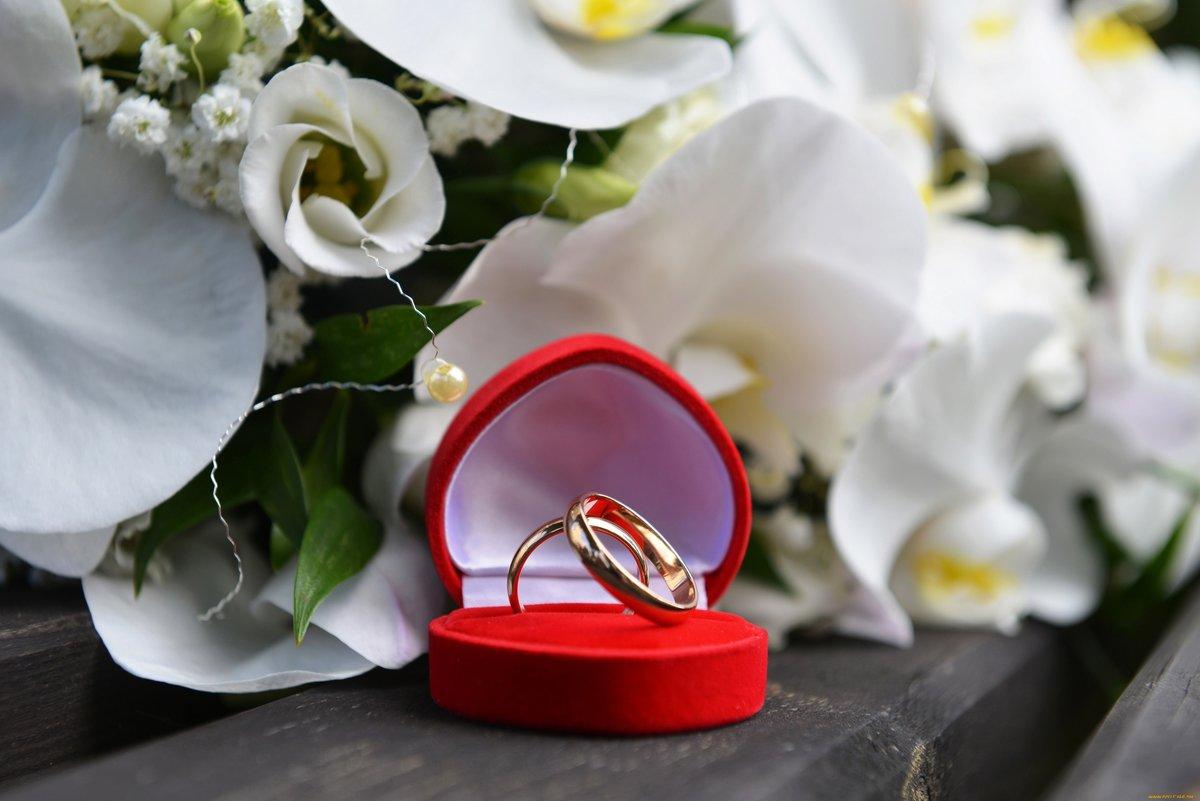 Кольца с цветами : картинки и фото кольца и цветы, скачать изображения