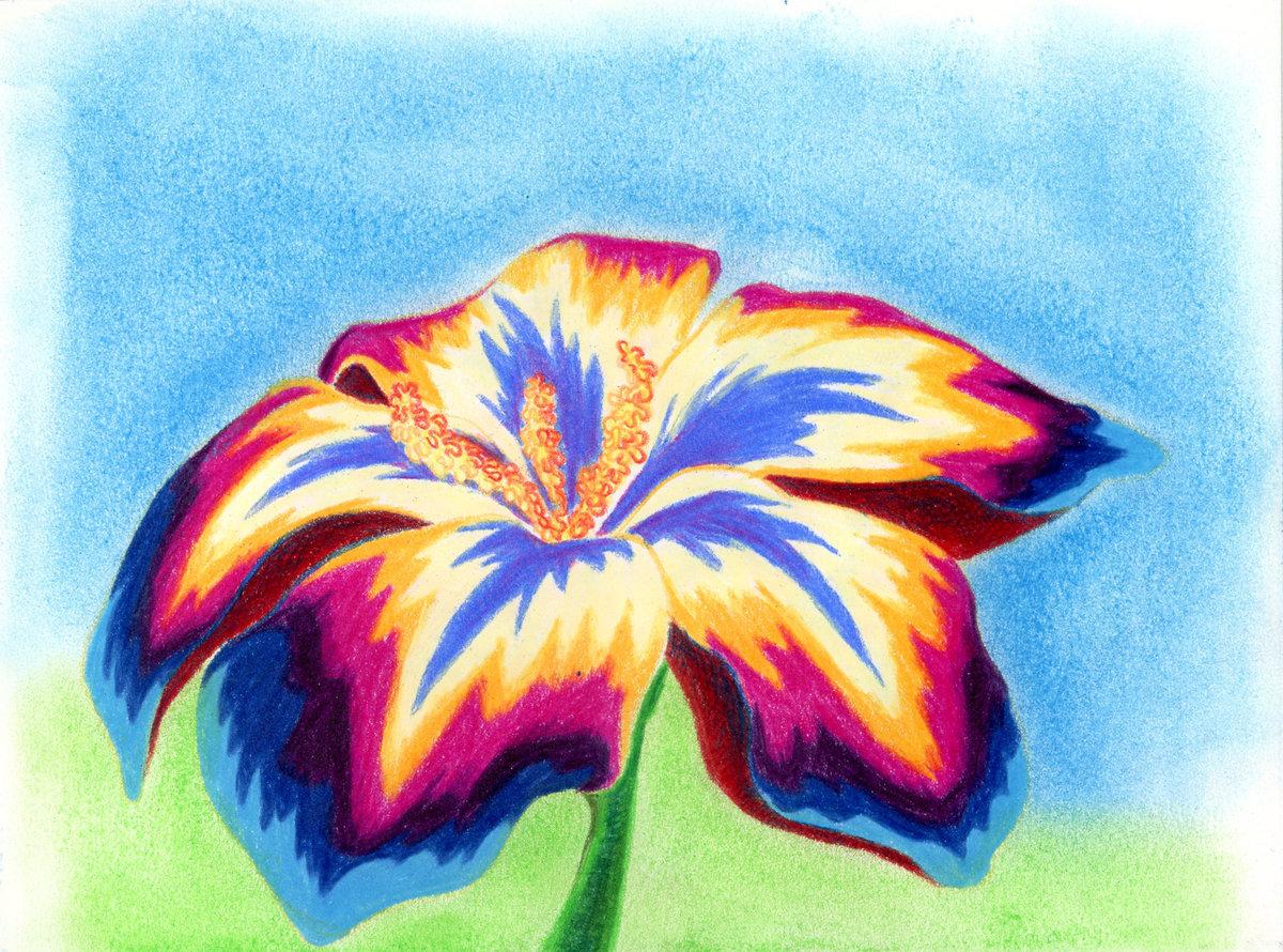 Цветы для с рисования фото