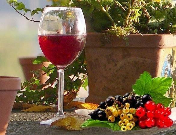 Домашнее вино из ягод вишни рецепты