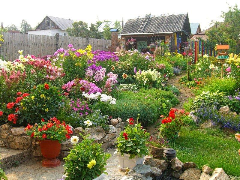 Клумбы своими руками на даче фото цветущее всё лето 1