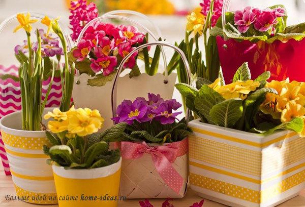 Фото красивых горшков для цветов