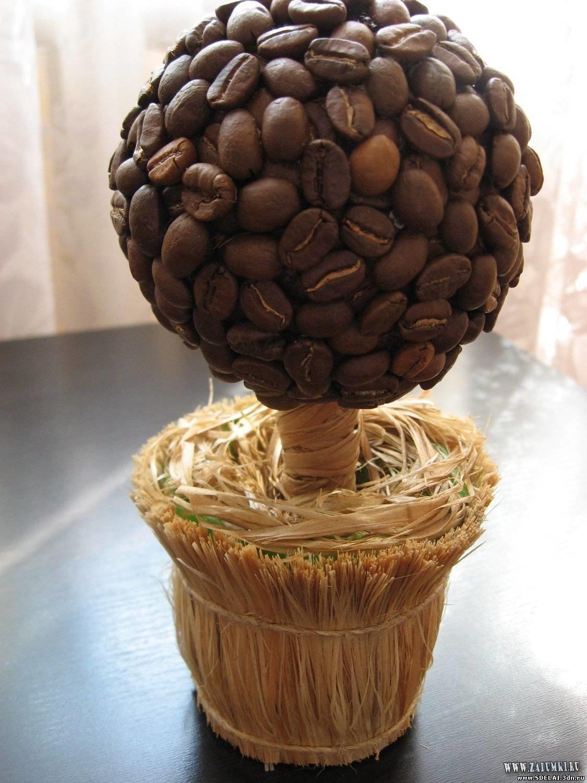 Топиарий из кофе : фото своими руками, кофейное дерево мастер класс, как 74