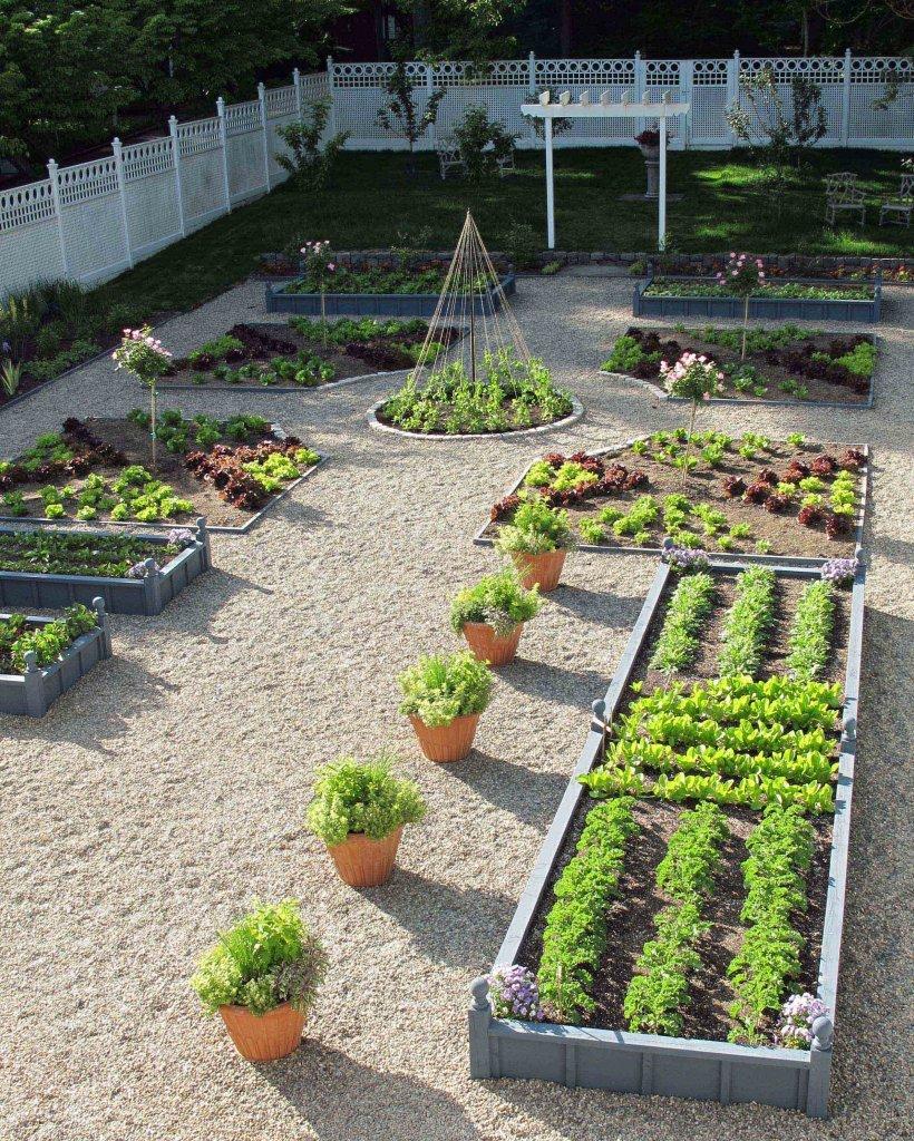 Как сделать сад из огорода 552