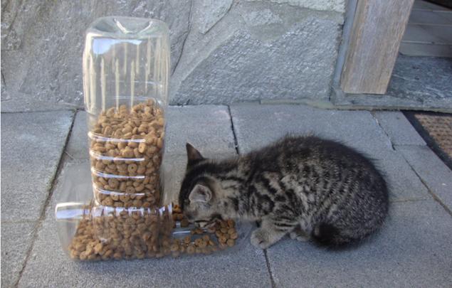 Дозатор кормушка для кошек своими руками 11