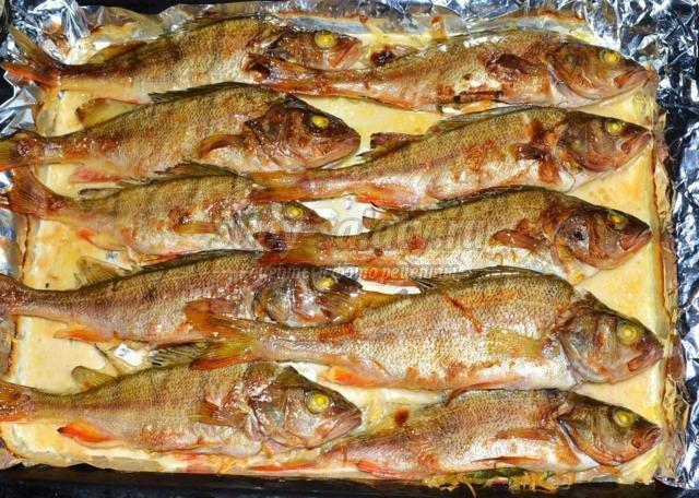 Окунь морской в духовке рецепты с фото целиком
