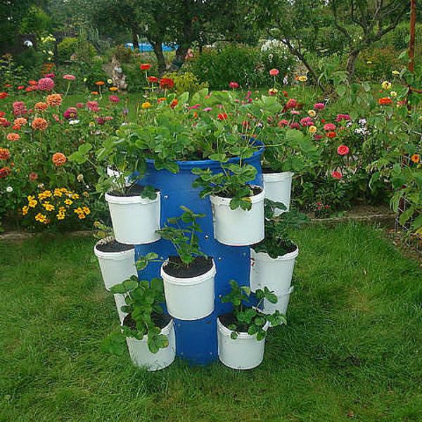 Все о саде и огороде своими руками