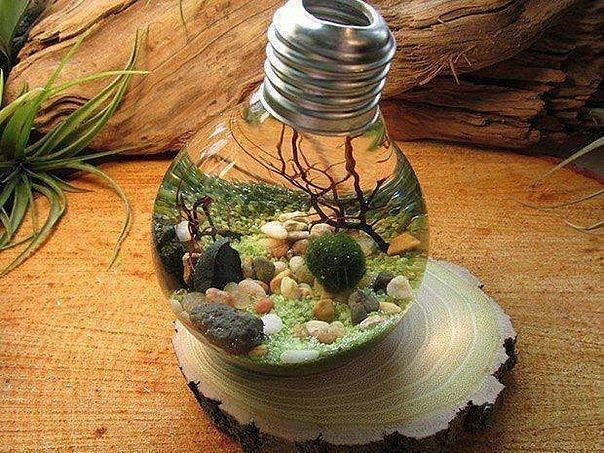 Экология своими руками фото