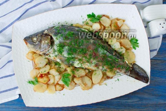 Карп на картошку рецепт