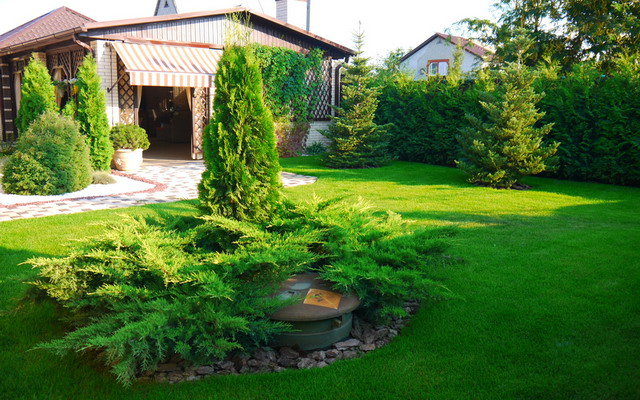 Ландшафтное озеленение участка загородного дома. - карточка от пользователя Irismyan в Яндекс.Коллекциях