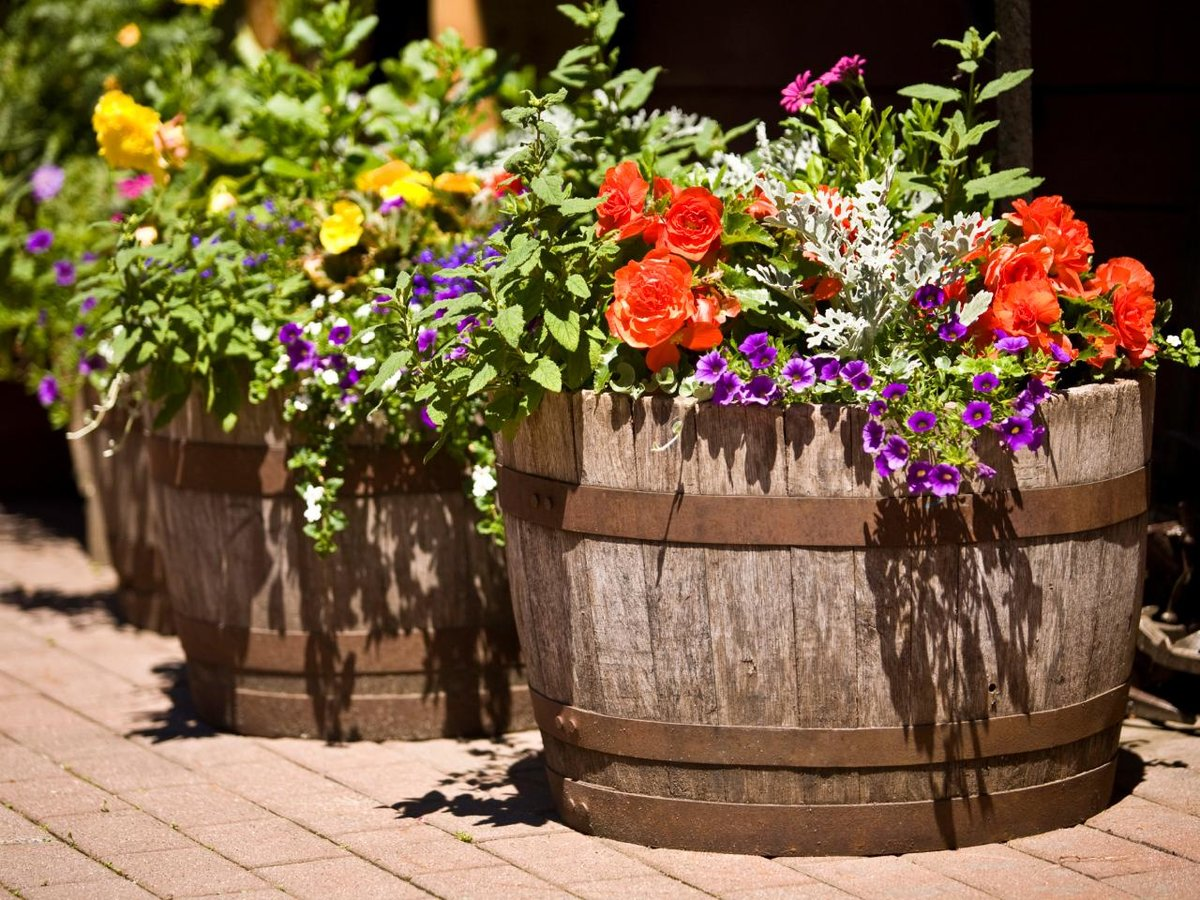 Вазоны для цветов из дерева уличные своими руками фото