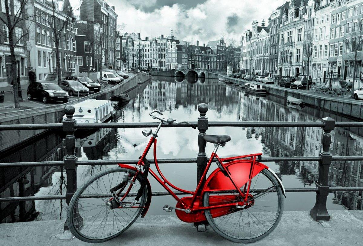 Amsterdam black and white photos New Nation News - Black-on-White Crime