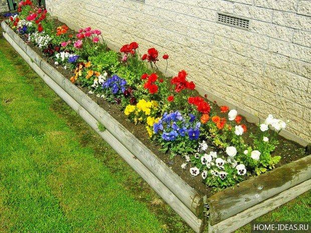 Цветники на даче своими руками для начинающих фото пошагово 73