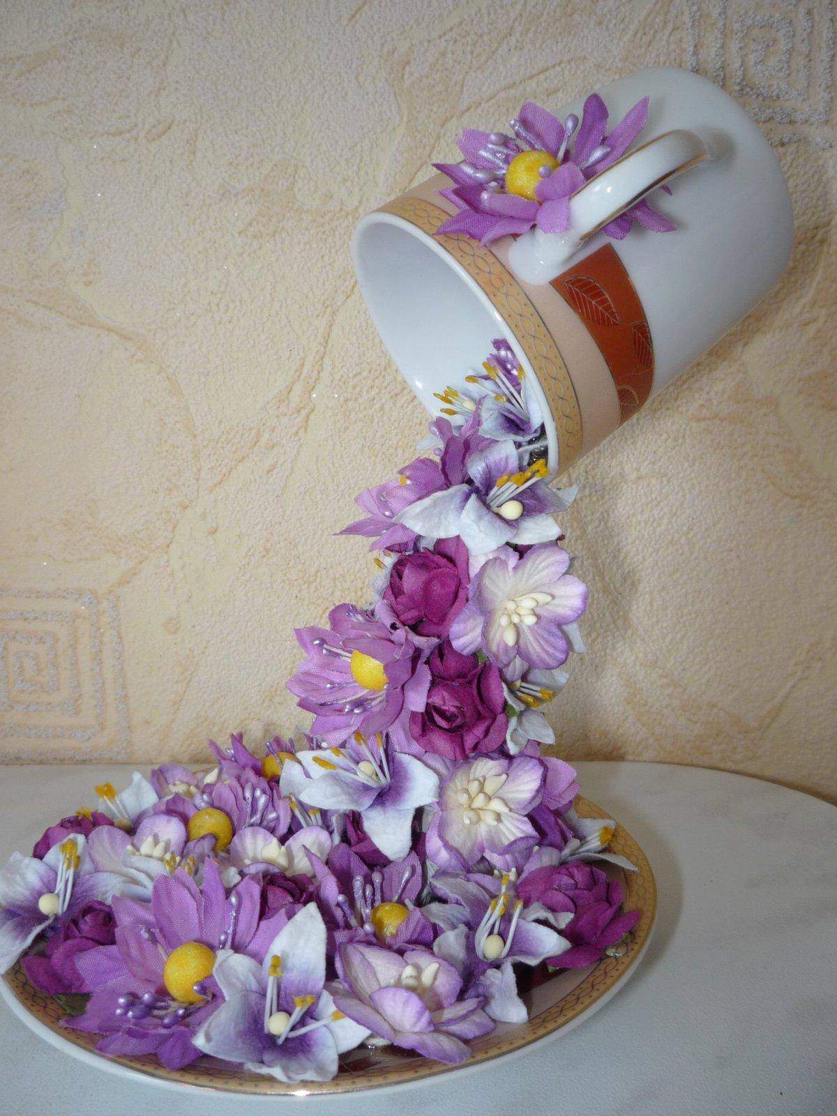 Абрикос - Выращивание абрикоса 8