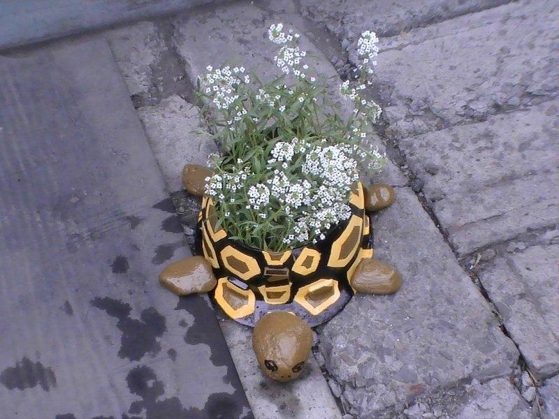 Клумба черепахи своими руками