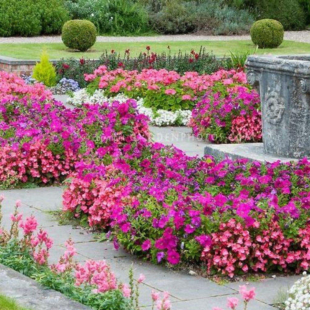 Дизайн посадки цветов фото