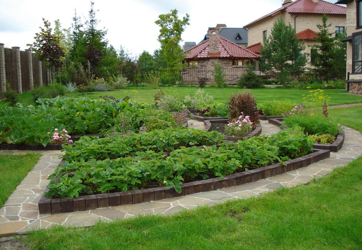 Посадить сад своими руками 537