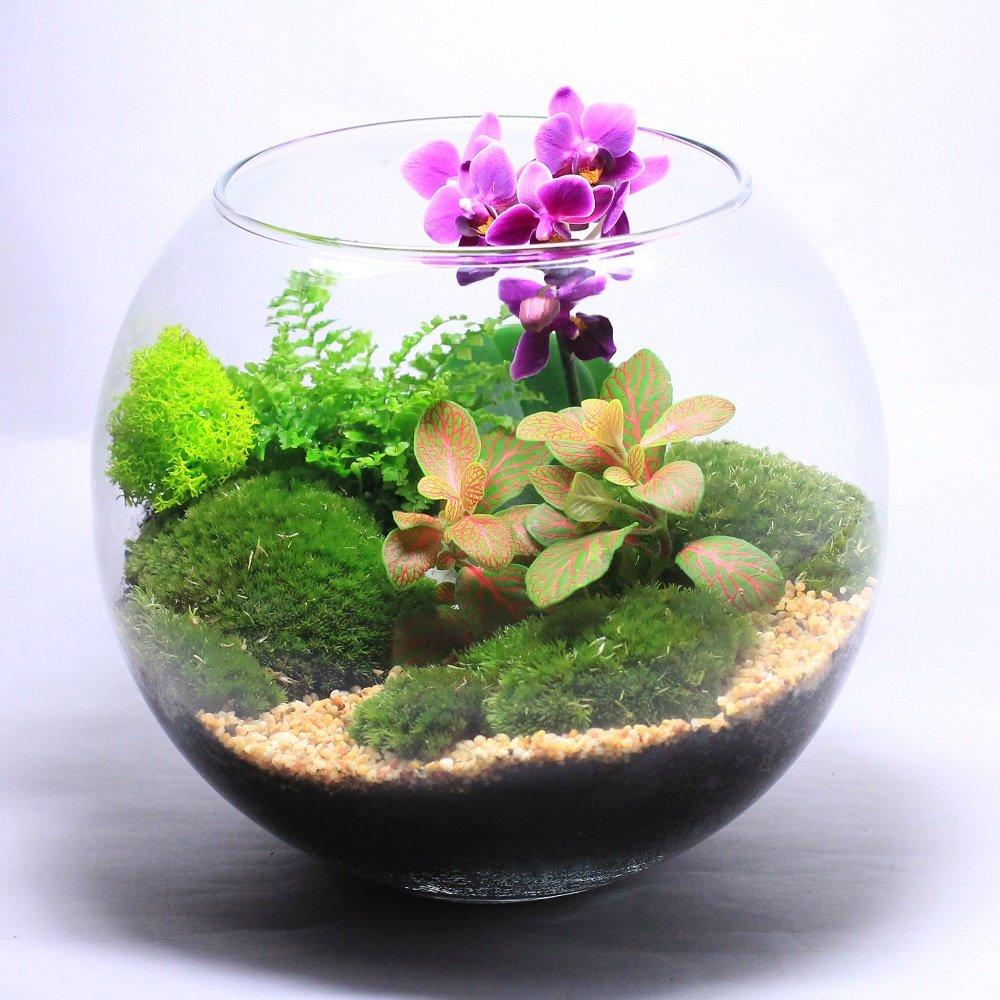 Как сделать флорариум своими руками - Handmade Idea 8