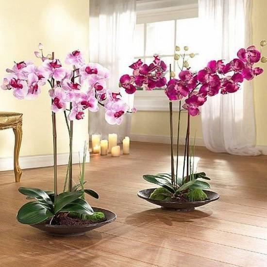 Искусственные цветы в интерьере квартиры фото