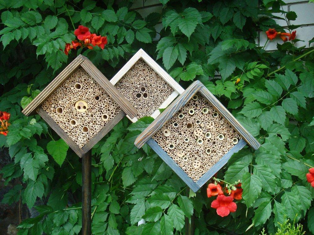 Домики для бабочек своими руками 1