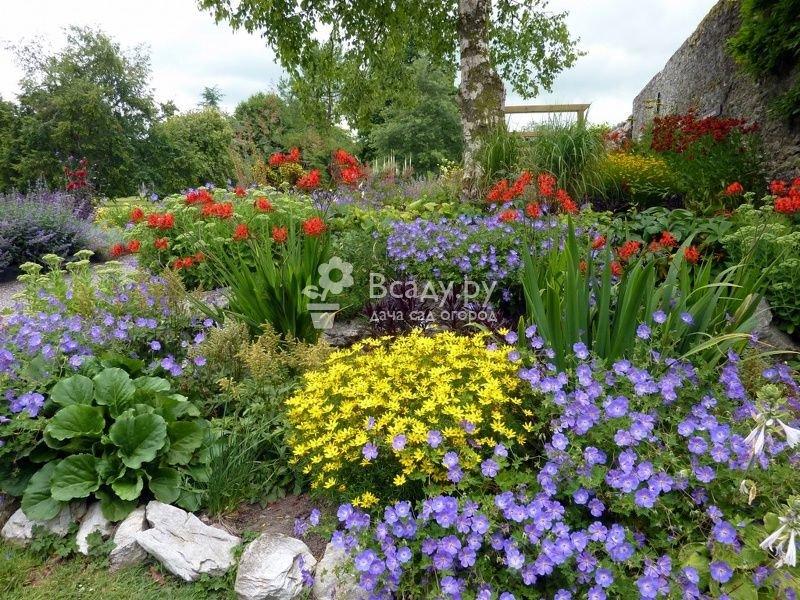 Мой любимый сад все своими руками 122
