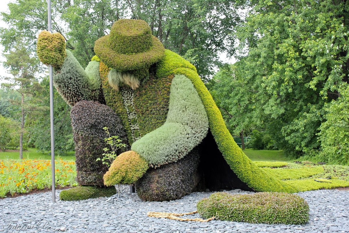 Как сделать фигуры из растений своими руками 16