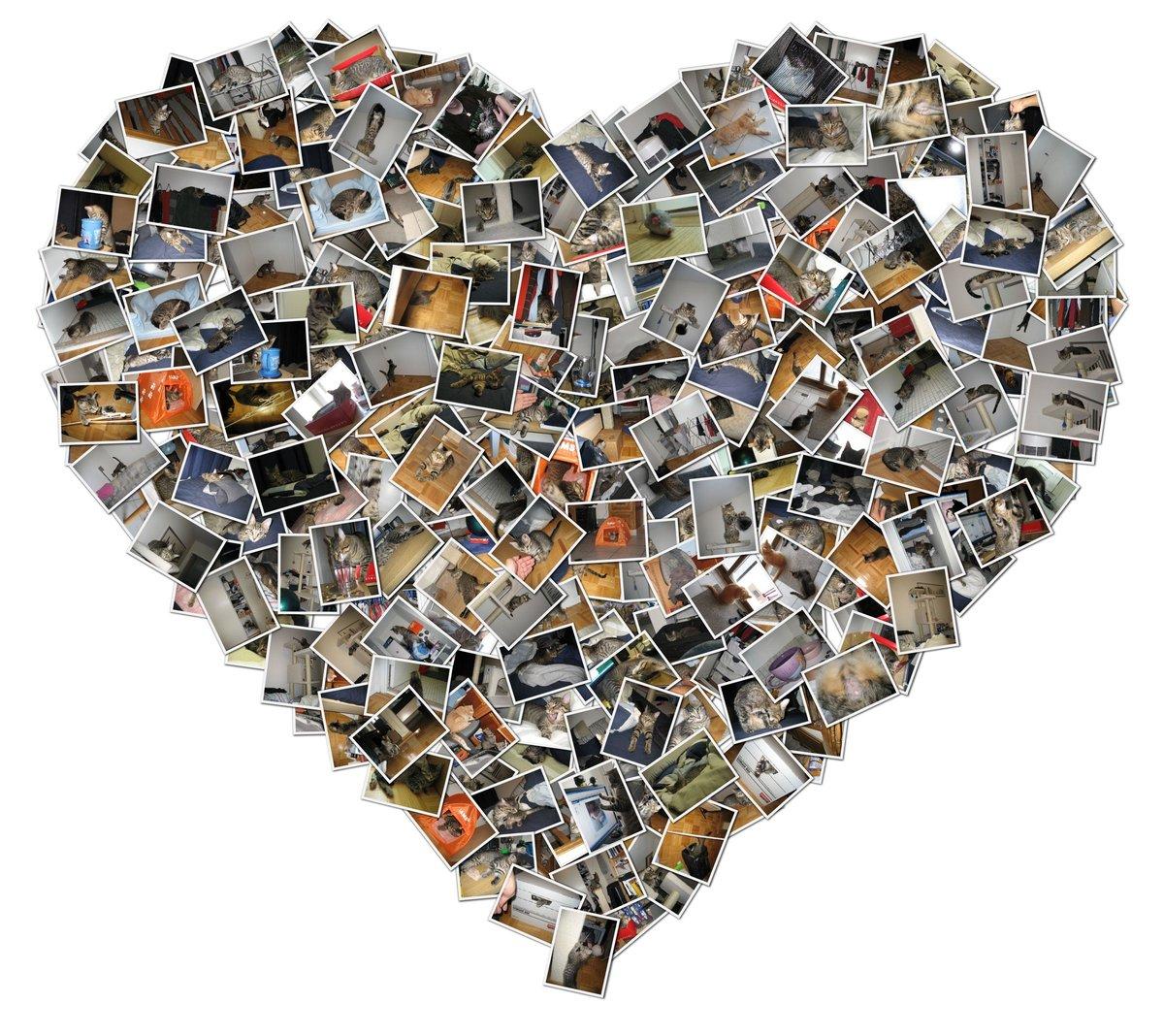 Hacer collage de fotos gratis en linea 46