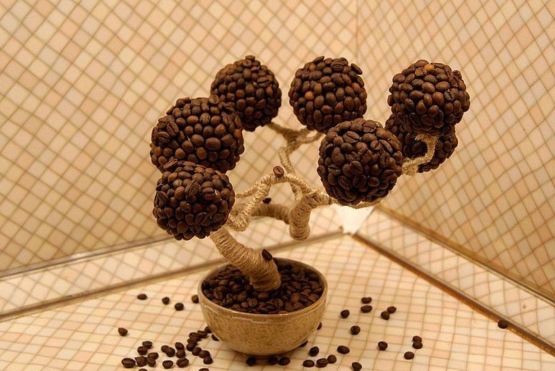 Дерево кофе своими руками из зерен кофе своими руками