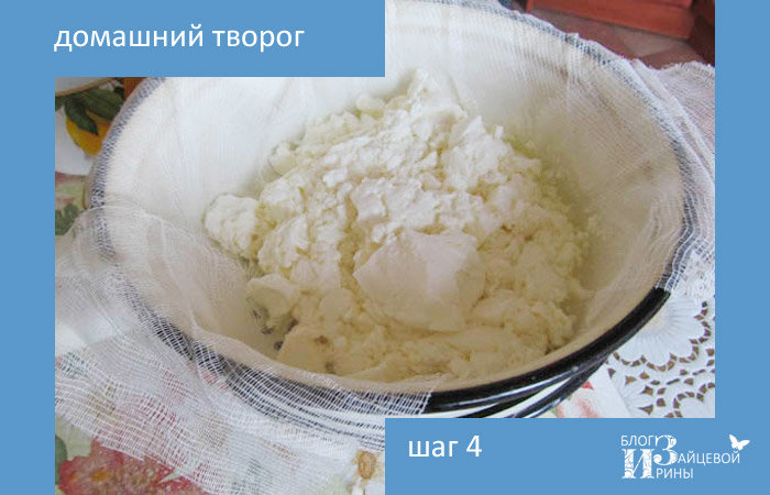 Рецепт приготовления творог из молока в домашних условиях 706