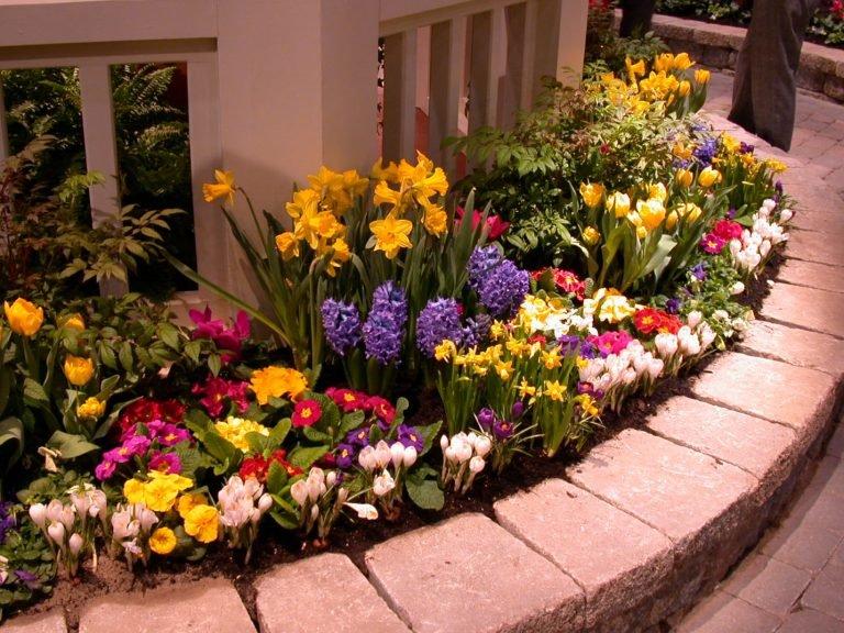 Декоративный цветник на даче
