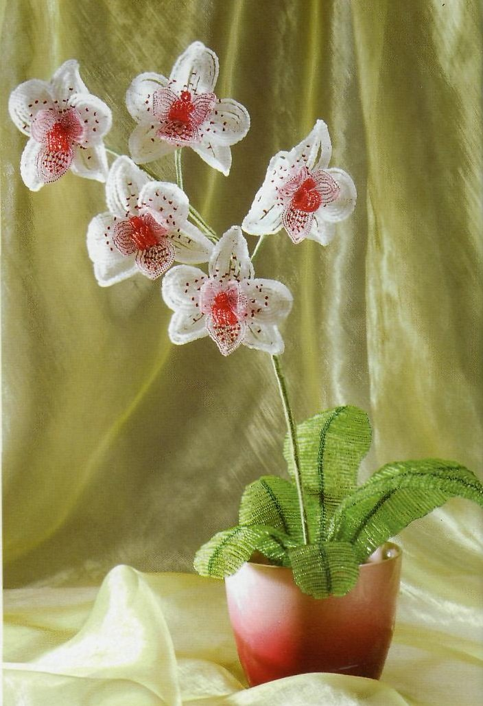 Орхидеи из бисера своими руками мастер класс