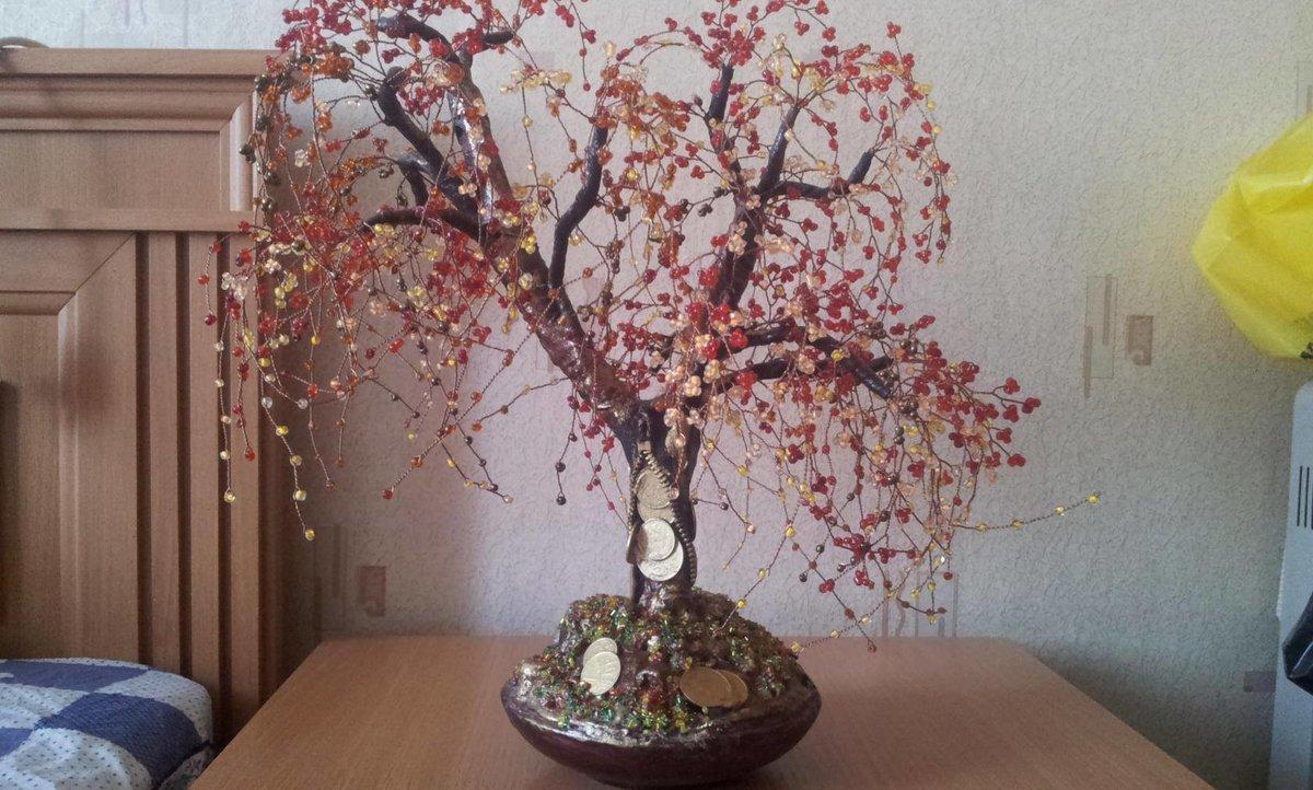 Денежное дерево сделать своими руками фото 17