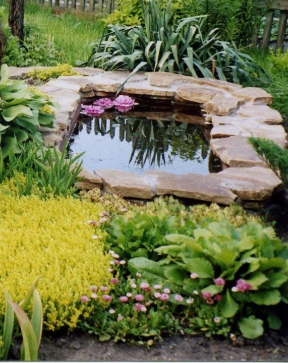 Пруды из ванны в саду